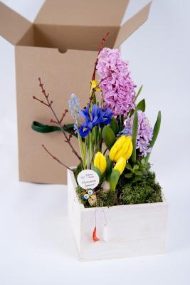 Aranjament In Cutie De Lemn Cu Flori In Ghiveci Si Martisor